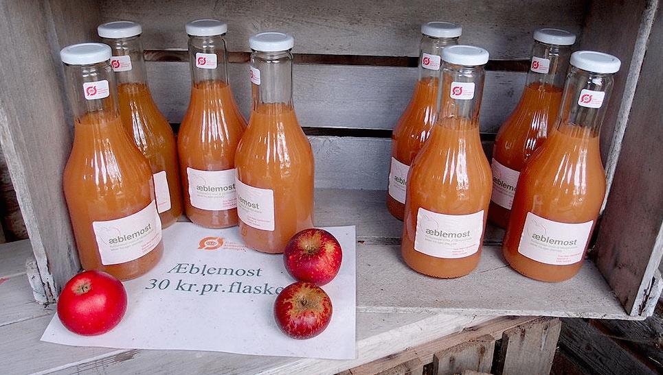 Tuse Næs byder på Æblefestival