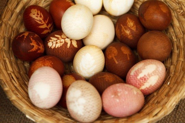 Æggejagt i Knudskoven