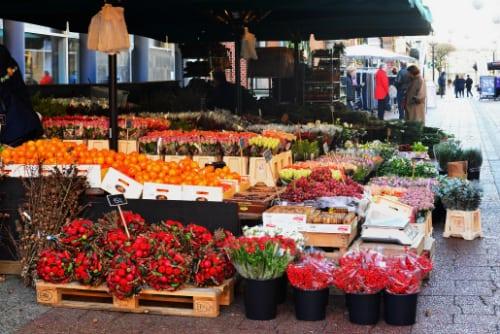 Et væld af farver i Holbæk