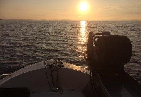 Foto: Kystfiskerne ApS - Fisk direkte til dig