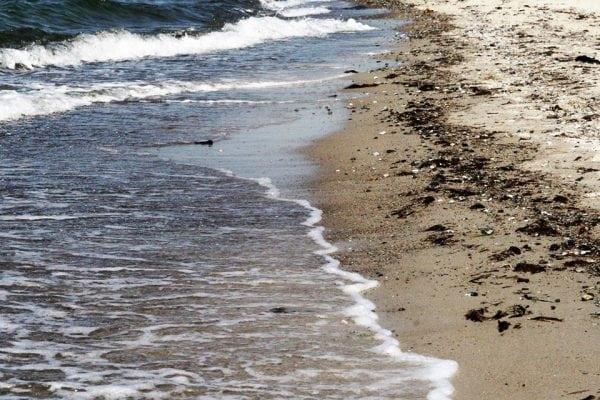 Vi savner kysten