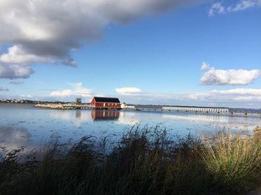 Aftenstemning ved fjorden