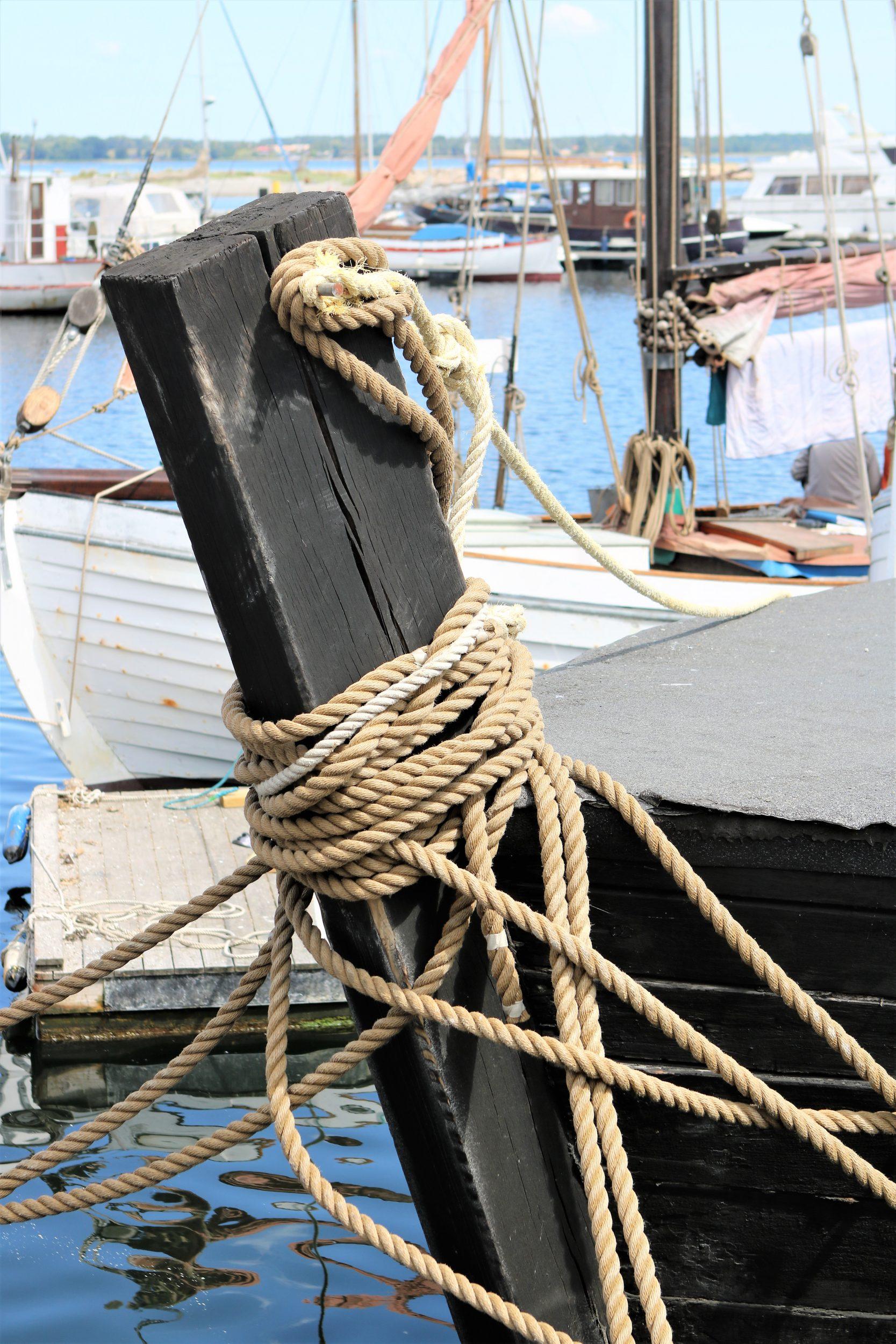 Omvisning på Holbæk Havn