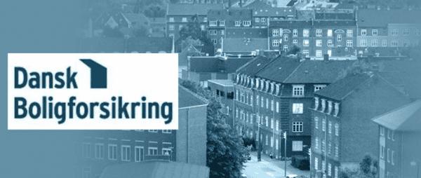 Dansk Boligforsikring har i 2018 haft den største markedsandel på ejerskifteforsikringer