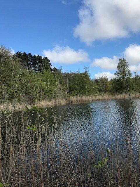 Grøn oase i Regstrup