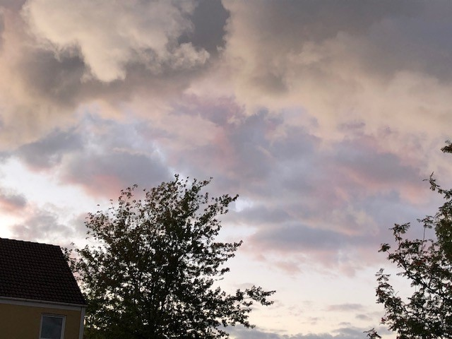 Aftenhimmel over Knudskovparken