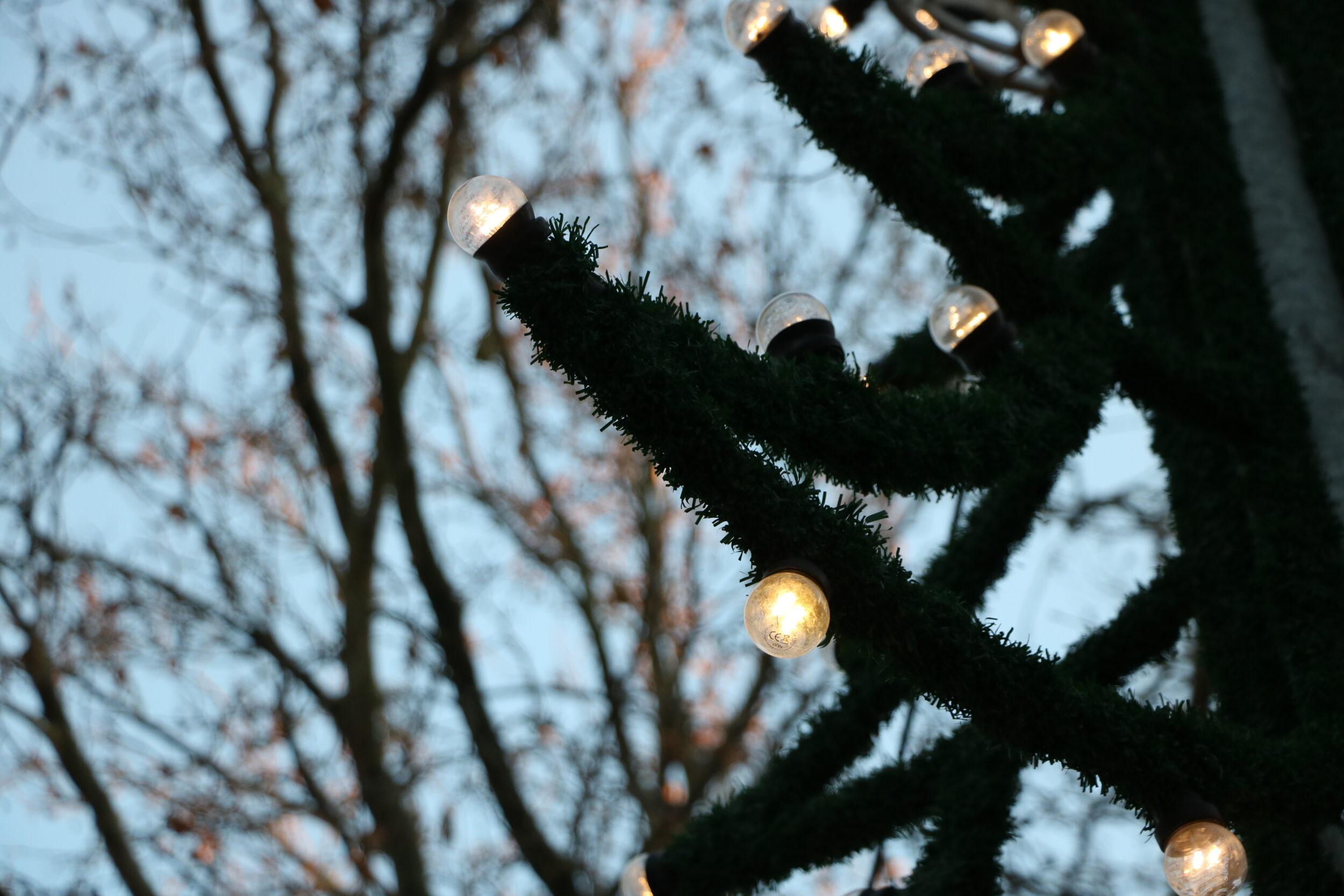 Holbæk Garden spiller jul i gaderne