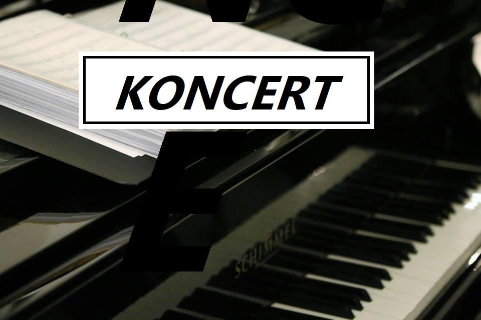 Koncert med Duo Kokos