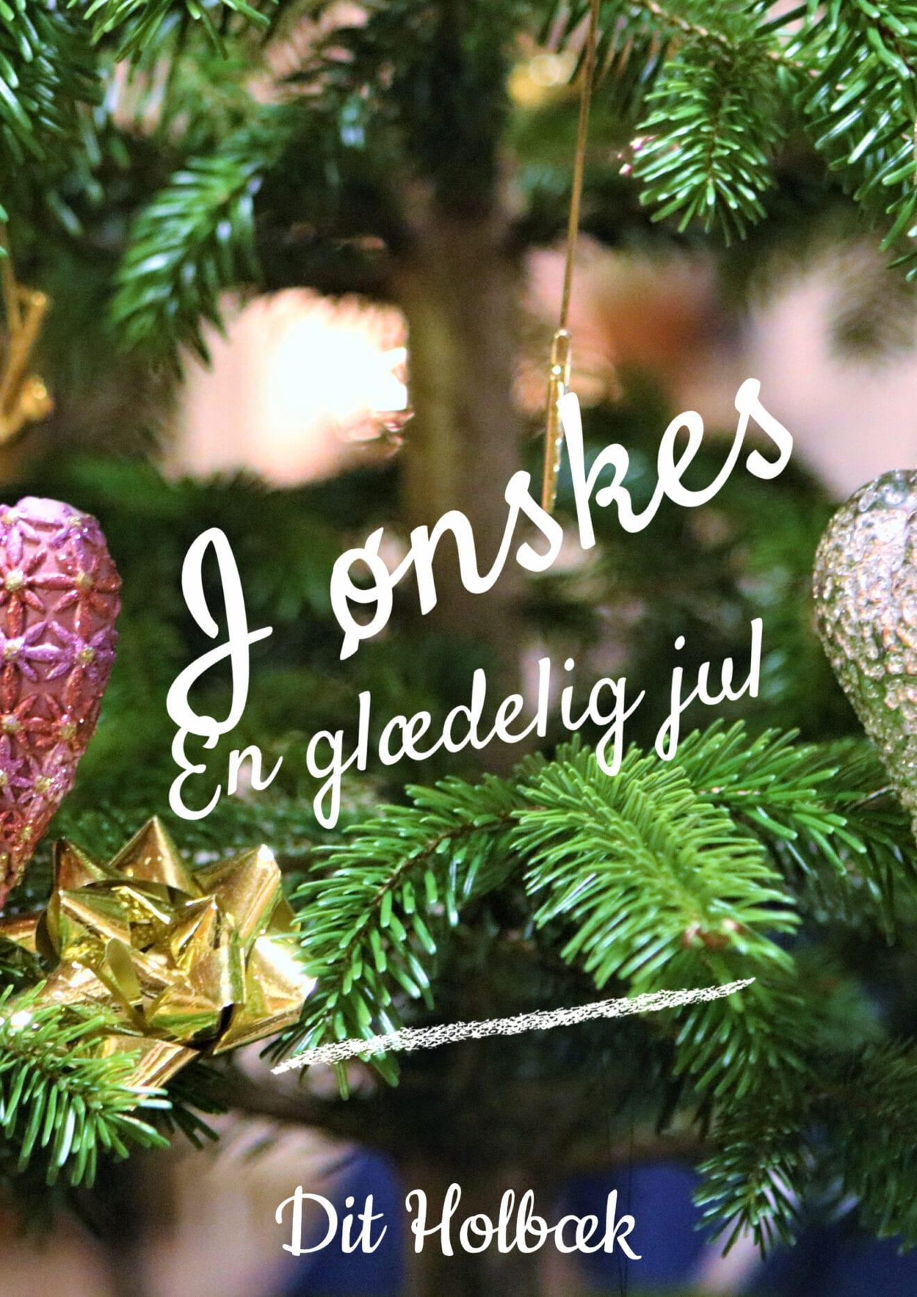 Dit Holbæk ønsker alle en glædelig jul