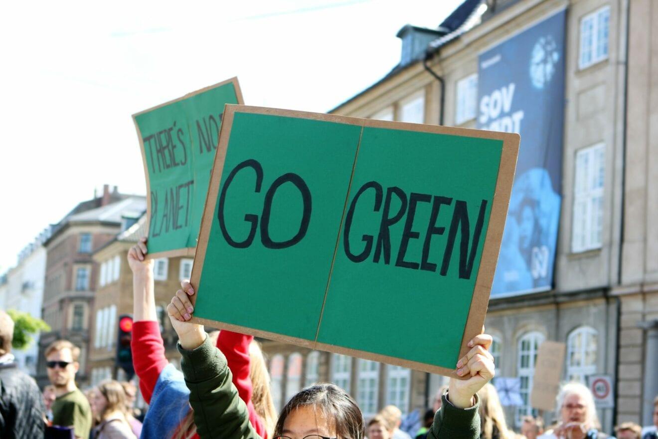 Region Sjælland samarbejder med OECD om tværgående grøn klimaregion