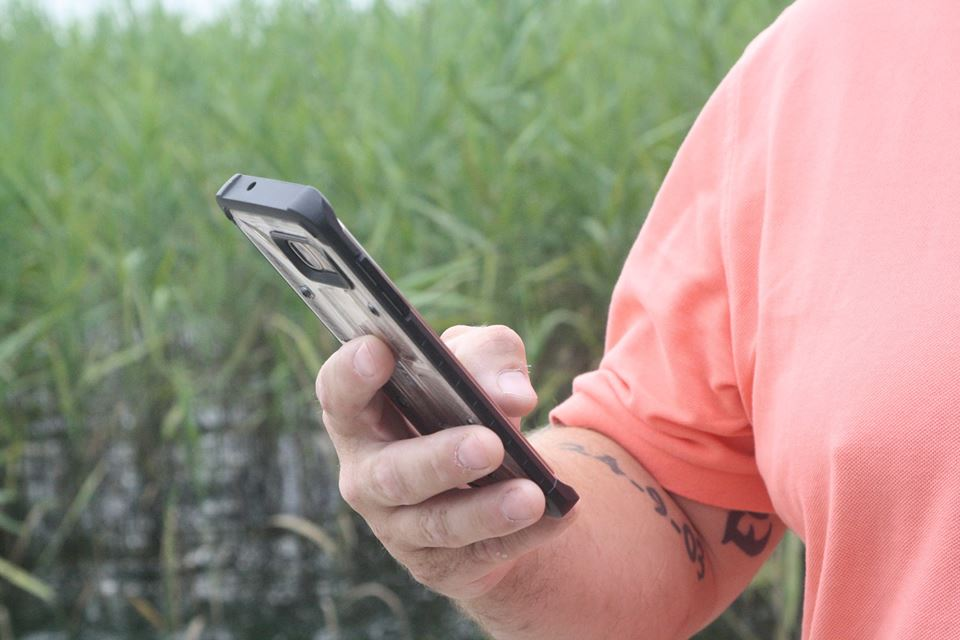 Få det gule sundhedskort på din mobil