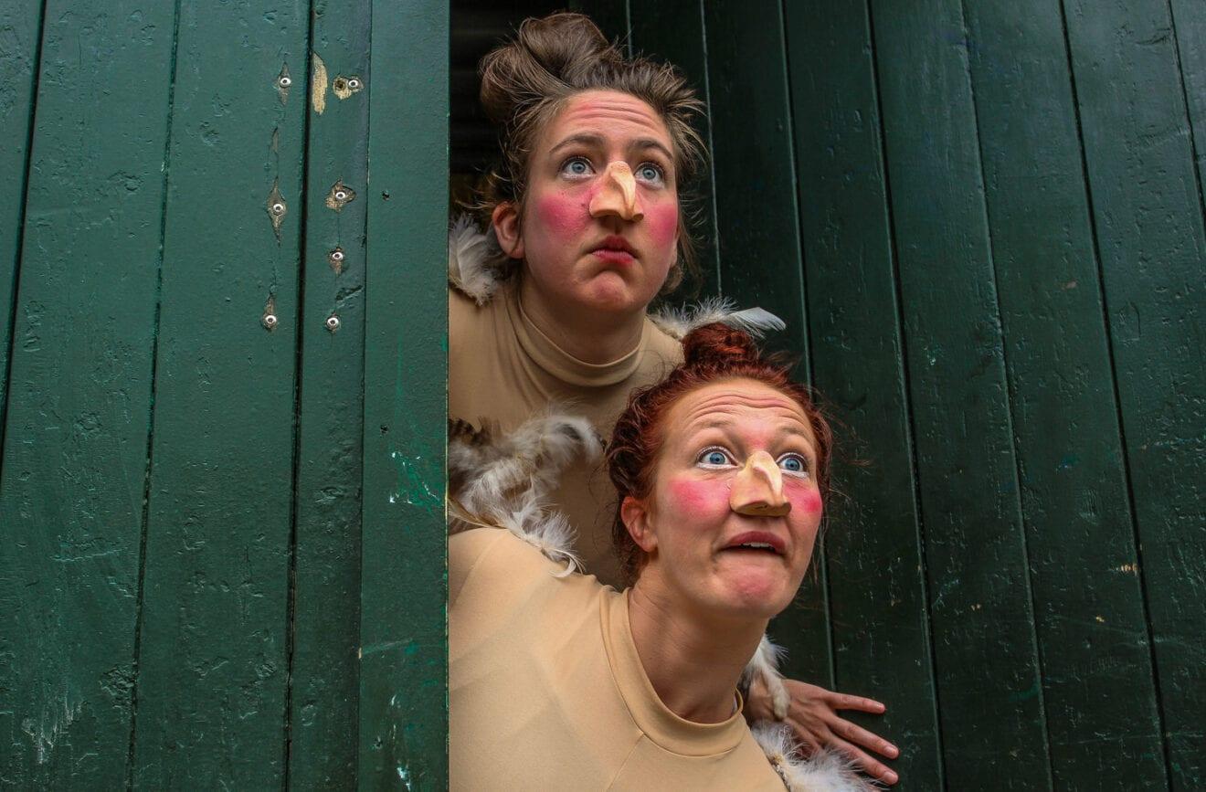 CHICKS - En forestilling om to burhøns' første møde med friheden