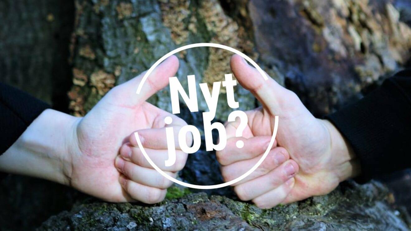 Naturpark Åmosen søger ny daglig leder